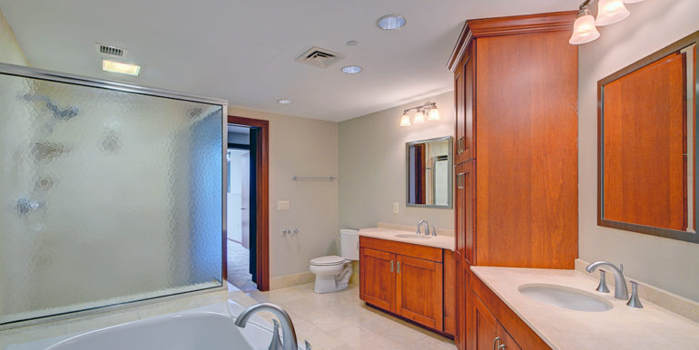 1_Owner's-Bath-C